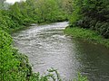 Greenbrier River (downstream from Durbin, West Virginia, USA) 3 (27170747193).jpg