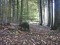 Grenzstein im Warndtwald - panoramio.jpg