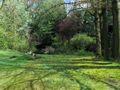 Groeningebeek2.jpg