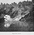Guatemala land quetzal Brigham 1887 19.jpeg