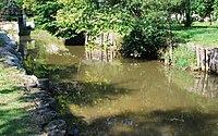 GuentherZ 2011-08-27 0256 Hardegg Fugnitz.jpg