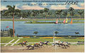 Gulfstream Park, at Hallandale, near Hollywood, Florida, 'the track by the sea', One of the nation's most scenic race courses.jpg