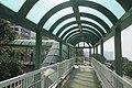 HK 香港南區 Southern District 薄扶林道 Pokfulam Road 瑪麗醫院 Queen Mary Hospital footbridge escalators January 2019 IX2 05.jpg