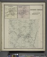 Hamlet (Village); Cherry Creek (Village); Cherry Creek (Village); Cherry Creek Business Directory. NYPL1583134.tiff