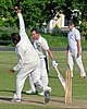 Hatfield Heath CC v. Netteswell CC on Hatfield Heath village green, Essex, England 24.jpg