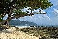 Havelock Island, Bay, Andaman Islands.jpg