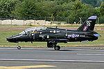 Hawk (5131252606).jpg