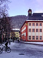 Heidelberg Universitätsplatz 2009 BILD0771.jpg