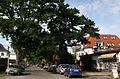 Heiligensee Wesselburer Weg.jpg