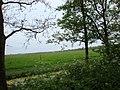 Heiloo - 6-5-2009 - panoramio - Heiloo (4).jpg