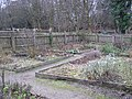 Herb Garden, Ulster American Folkpark - geograph.org.uk - 284174.jpg