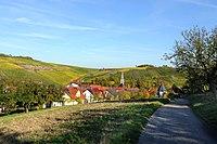 Herbstlicher Spaziergang durch die Becksteiner Weingärten. 18.jpg