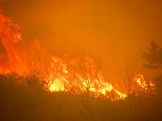 High Park Wildfire Arapaho and Roosevelt National Forests June 10, 2012.jpg