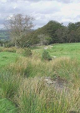 Hill Stream Landscape on Bryn Mawr, Ceredigion - geograph.org.uk - 566359
