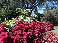 Hillwood Gardens in September (21669484141).jpg