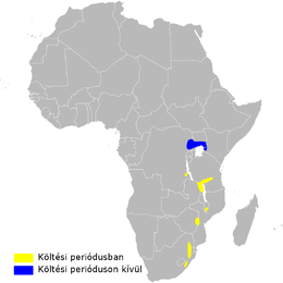 Hirundo atrocaerulea distribution map.png