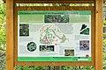 Horn-Bad Meinberg - 2015-05-10 - LIP-028 Silberbachtal mit Ziegenberg (24).jpg