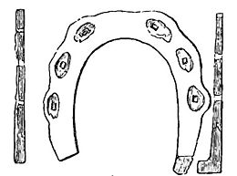 Horse shoes and horse shoeing page216a.jpg