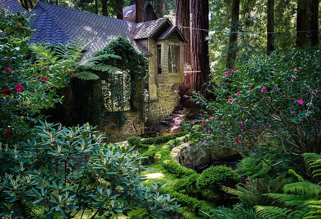 File house amongst redwood trees cascade for Cascade house