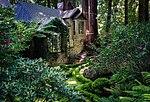 House amongst redwood trees, Cascade Canyon.jpg