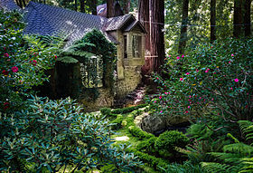 House amongst redwood trees, Cascade Canyon.jpg