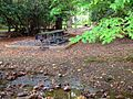 Hungry Mother State Park Picnic Area (15208713175).jpg