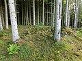 Husgrund efter sommarladugård i Bäckagårdens mark (RAÄ-nr Sörby 104) 2306.jpg