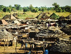 Huts outside Wau, 2008