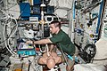 ISS-36 Luca Parmitano and Chris Cassidy in the Columbus lab 2.jpg