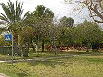 Idan garden.jpg