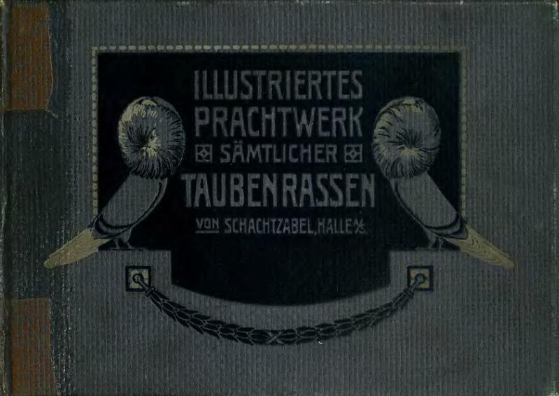 File:Illustriertes Prachtwerk sämtlicher Taubenrassen (Schachtzabel, 1906).djvu