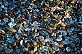 Ilya Katsnelson - Glass Beach - 5.jpg