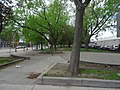 Images taken out a west facing window of TTC bus traveling southbound on Sherbourne, 2015 05 12 (90).JPG - panoramio.jpg