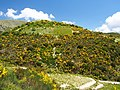 In the mountains of Lefkada, pic2.JPG