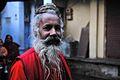 Indien (4046983261).jpg