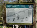 Information Board at Tony's Patch Nature Reserve - geograph.org.uk - 246965.jpg
