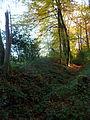 Innerer Landgraben Aachen - Grindelweg.JPG