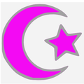 Islamic star and crescent electric fuchsia.PNG