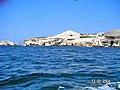 Islas Ballestas - panoramio (27).jpg