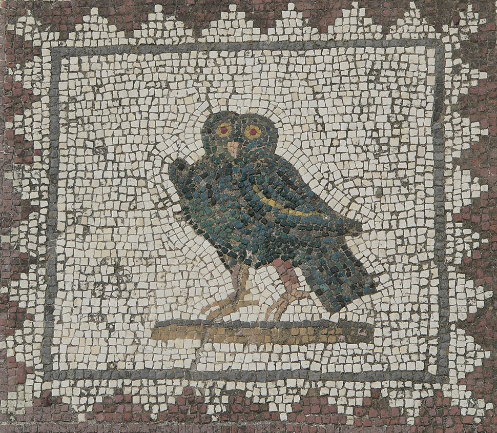 Itálica Owl