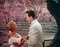 Jane Powell and Vic Damone in Deep In My Heart.png