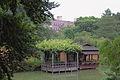 Japanese Hill-and-Pond Garden, Brooklyn 12.JPG