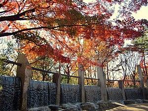 Suginami - Autumn colors in a park Suginami