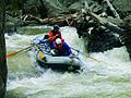 Jarbidge River (23593565450).jpg