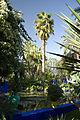 Jardin Majorelle in Marrakesch 03.jpg