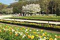 Jardin des plantes en fleurs à Paris le 3 avril 2017 - 22.jpg
