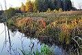 Jesień w Borach Dolnośląskich 2 - panoramio.jpg