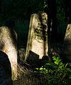 Jewish cemetery Otwock Karczew Anielin IMGP6773.jpg