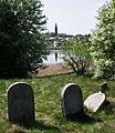 Jewish cemetery Ryki IMGP3319.jpg