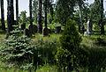 Jewish cemetery Zolynia IMGP4567.jpg